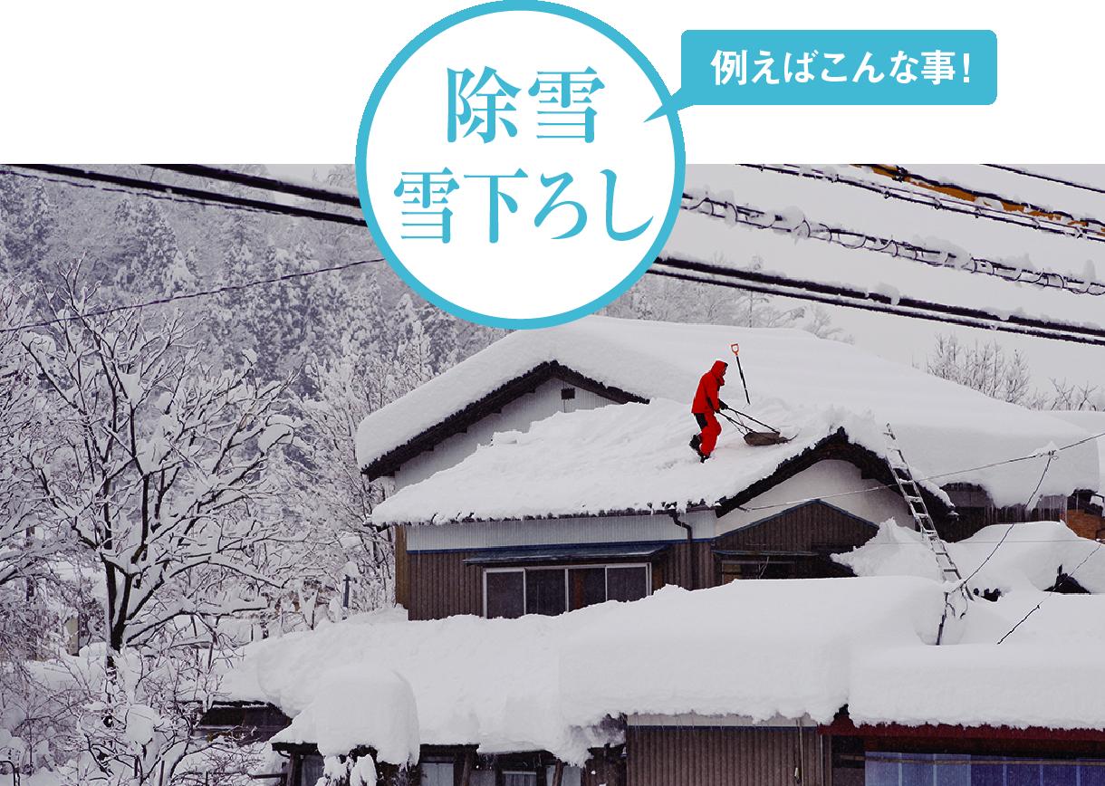 除雪雪下ろし